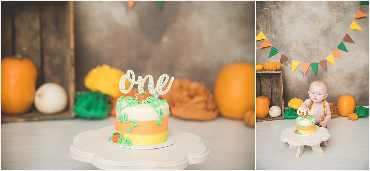 Pinkham Fall Cake Smash Logan Utah Photographer
