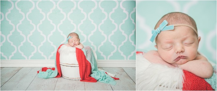 Lowe Newborn Logan Utah Newborn Photographer