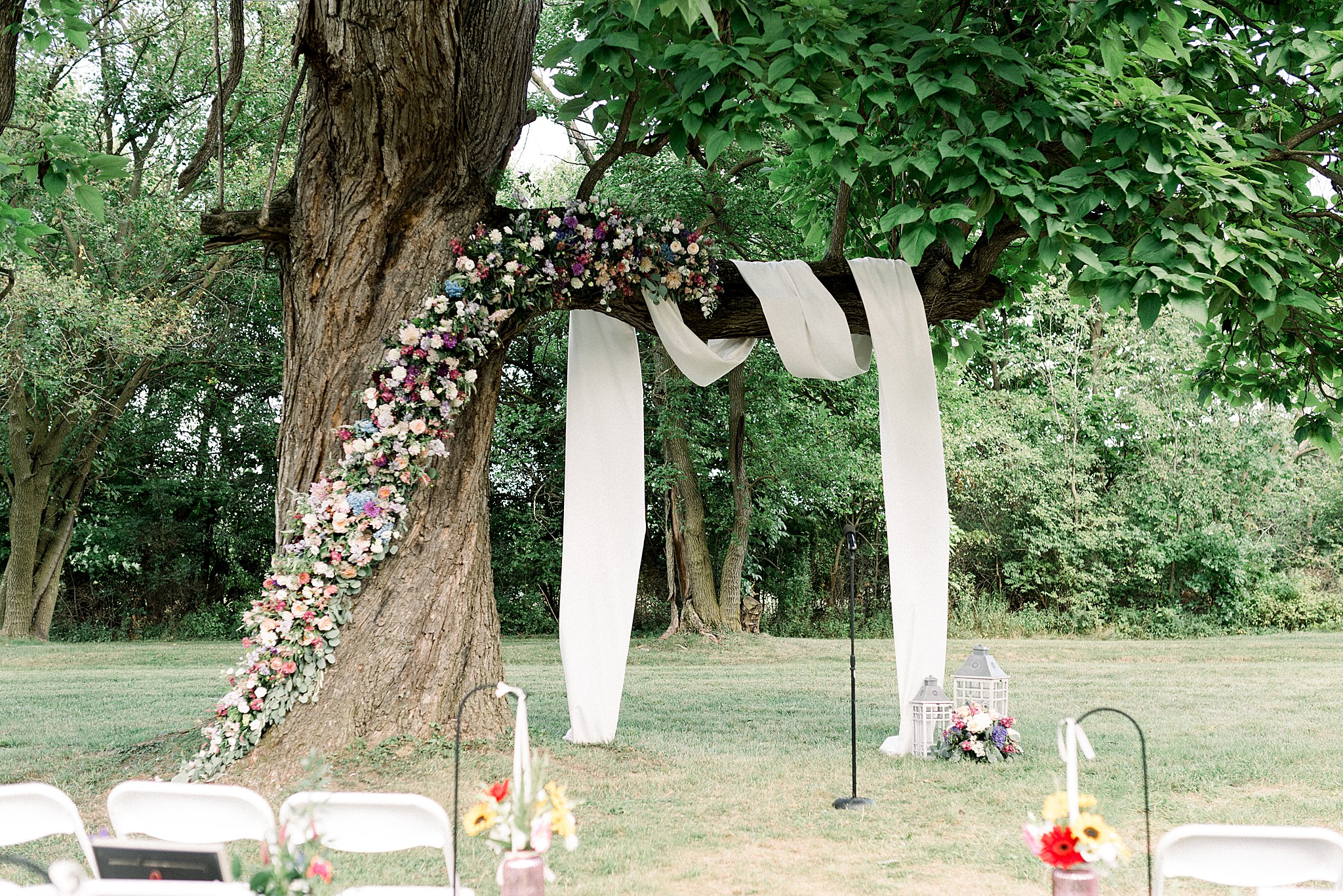 floral arch on tree