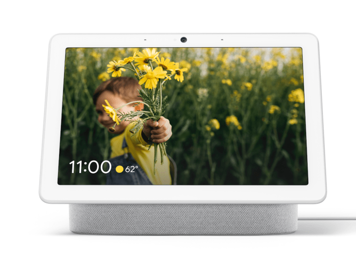 - 19 0403 0214 01 NewmanOrthos RockCandy F R - Hello Mistral: Google Nest WiFi expected to include Google Assistant capabilities – Stacey on IoT