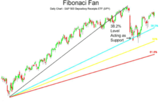 fibonaci fan