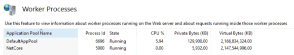 """After selecting """"Worker Processes"""" from the main IIS menu, you can see the currently running IIS worker processes."""