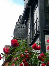 Bremen owl roses street sign