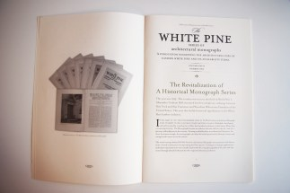 white-pine-3