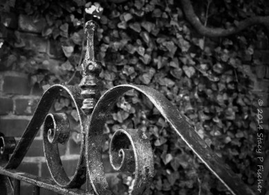 Photo of iron gate after converting to black and white in Lightroom.