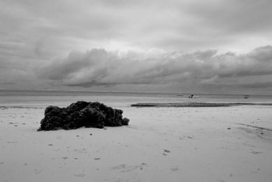 Bamburi Beach (After), Manal Ali, A Single Shutter