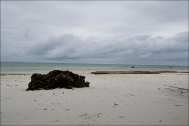 Bamburi Beach (Before), Manal Ali, A Single Shutter