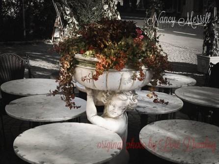 Nancy Merrill, Nancy Merrill Photography