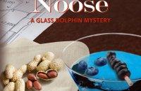 amateur sleuth mystery novel