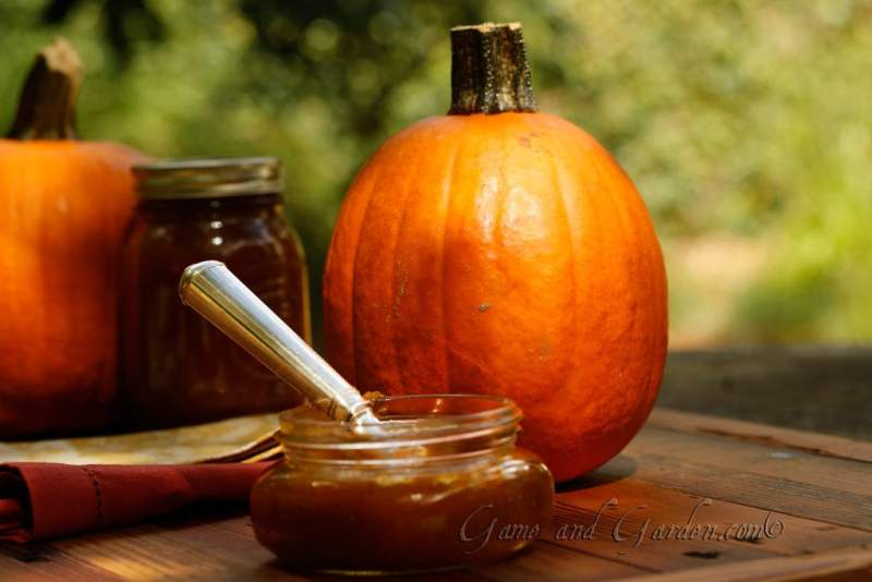 Pumpkin Butter is just to die for..well...almost.