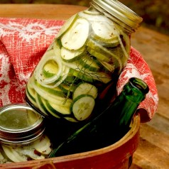 Refrigerator Dill Pickles are one of my favorite summer treats, not to mention a great way to use the cucumbers that I'm harvesting in abundance from the garden!