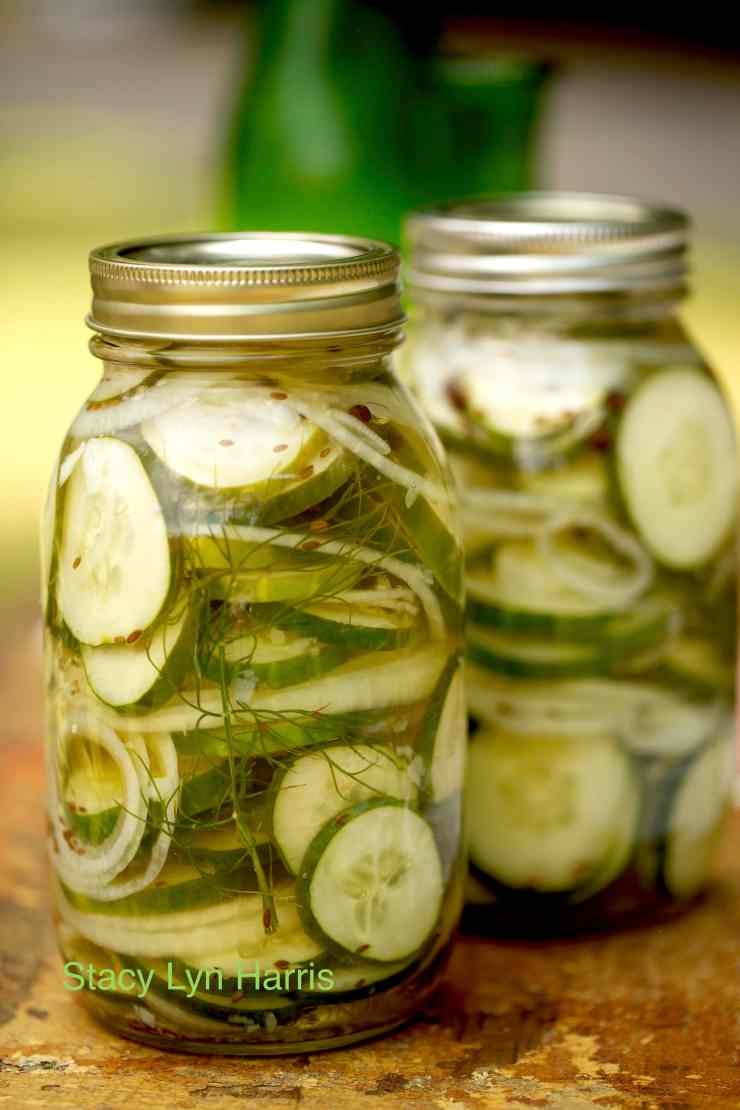 You can use either pickling or slicing cucumbers for this recipe! This is my easy go-to fast pickle recipe. It makes hamburgers very special.