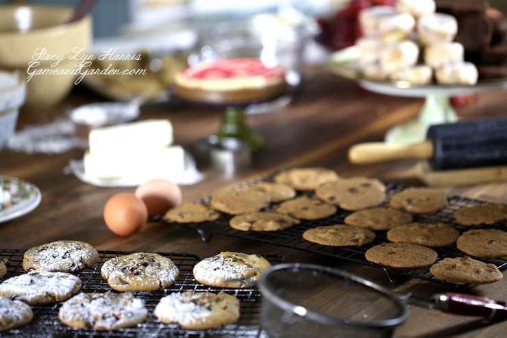 Crispy Thin Chocolate Chip Cookies
