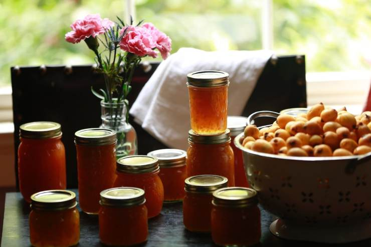 Homemade Jelly - One of Life's Most Treasured Gifts!