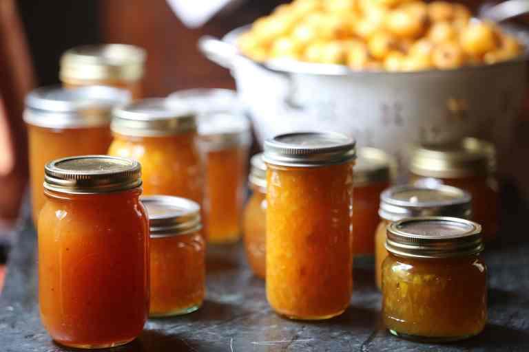 Loquat Jelly Jars