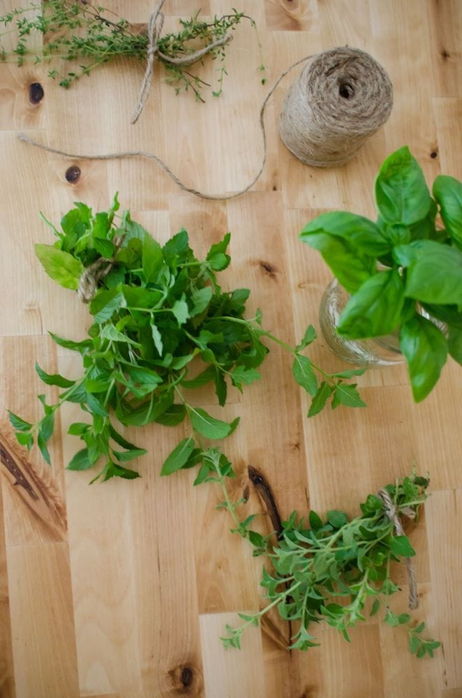 Preserve Your Harvest with the Homesteaders Herbal Companion.