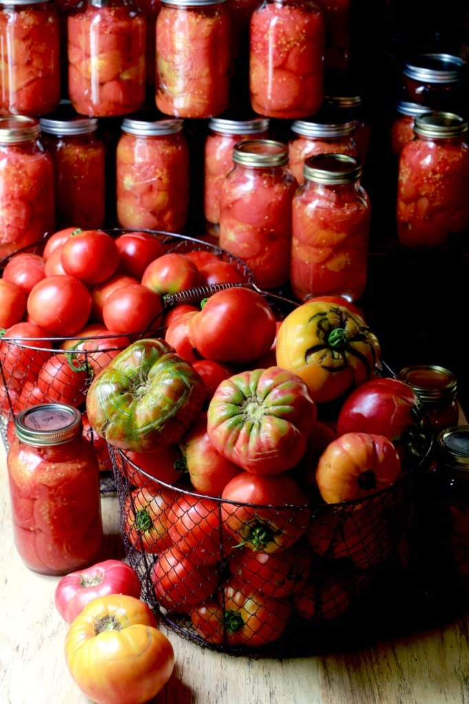 Salsa in jars and tomatoes