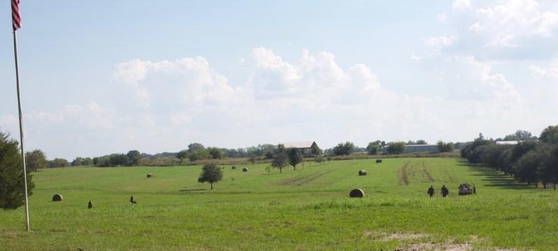 Mistletoe Plantation, the land where the dove hunt took place