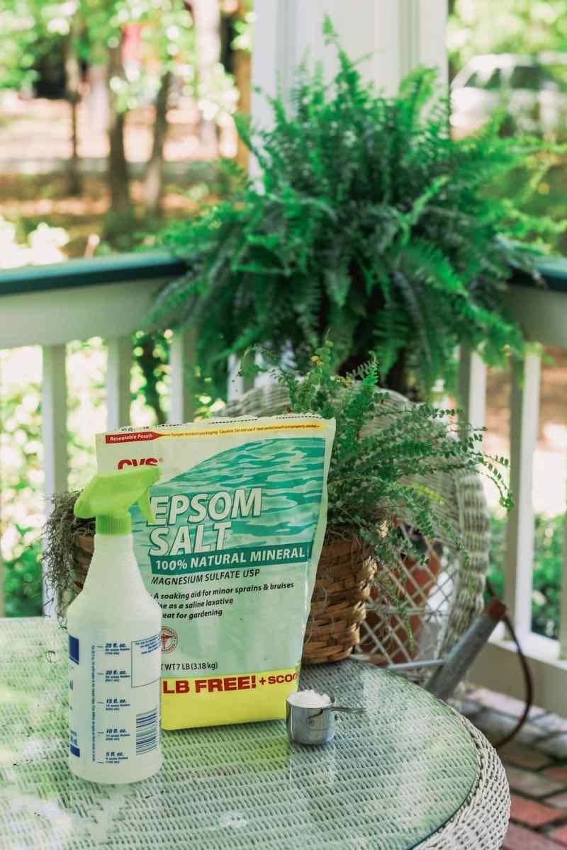 Epsom salt on table on front porch