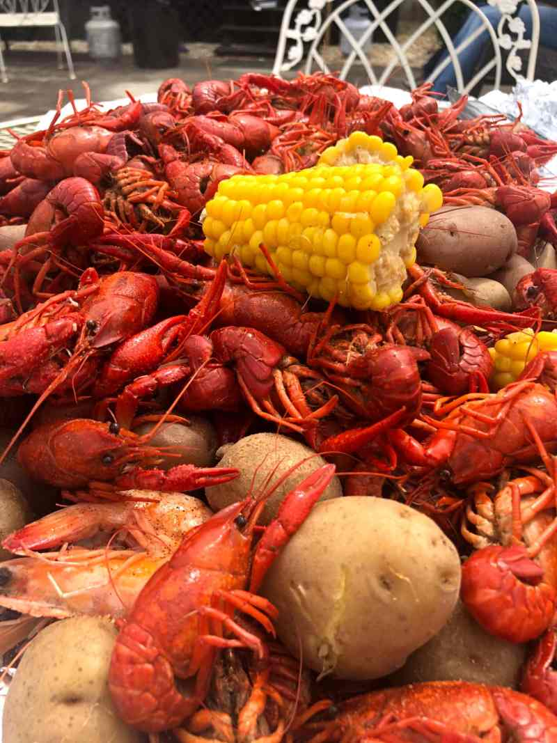 Bright Red Crawfish on a table with potatoes and a bright yellow corn with an outdoor chair
