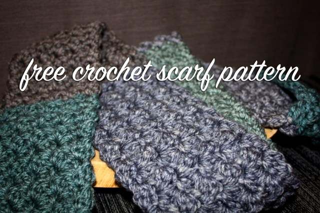 Easy *FREE* Crochet Pattern – Textured Scarf with Caron Tea Cakes ...