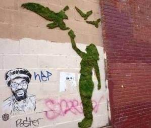 Moss Graffiti de Edina Tokodi. Foto: faseextra.