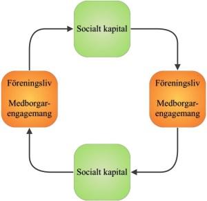 Illustration 5: Ett cirkelresonemang – Socialt kapital leder till medborgarengagemang, medborgarengagemang leder till socialt kapital osv. Vad som kommer först kan vara svårt att avgöra.