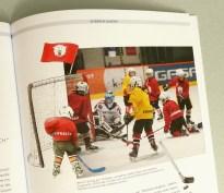 Illustration der Eisbären Juniors für das Kapitel Sportsponsoring
