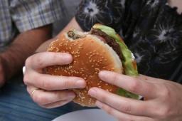 Hamburger, Haibach Dorffest Bilder