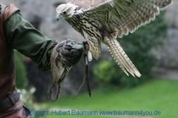 Flugshow-Burg-Hohenwerfen-001