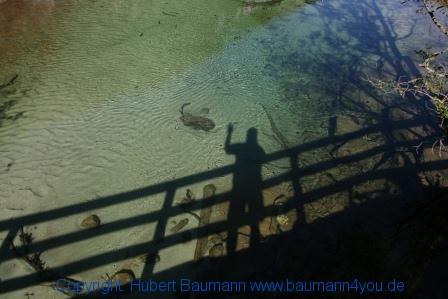 Grossarltal 442 Der eigene Schatten