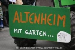 Haibach Faschingszug 2013 242