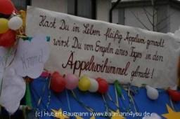 Haibach Faschingszug 2013 259