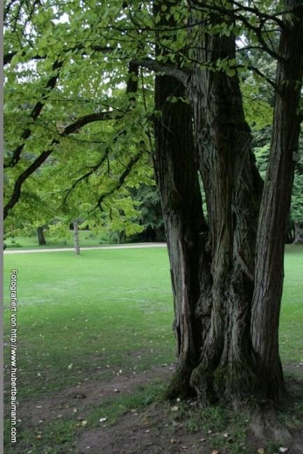 Neropark Wiesbaden