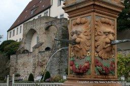 Leonberg Pomeranzengarten mit Schloss