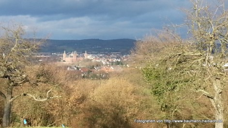Blick auf das Schloss Johannisburg - Spaziergang rund um den Ludwigstempel Aschaffenburg