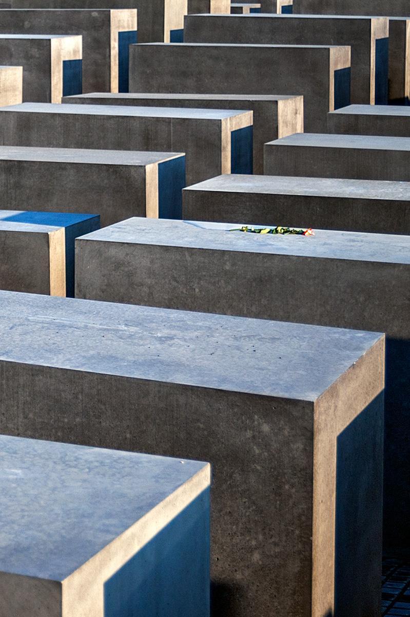 Eine Blume auf den Steelen auf dem Holocaust Mahnmal in Berlin