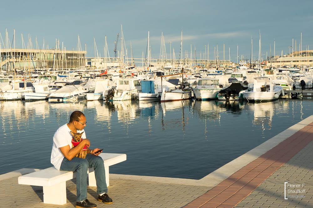 Denia, Hafen