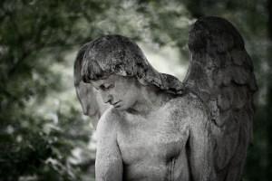 Friedhof St. Marx1 _ c sabine karrer