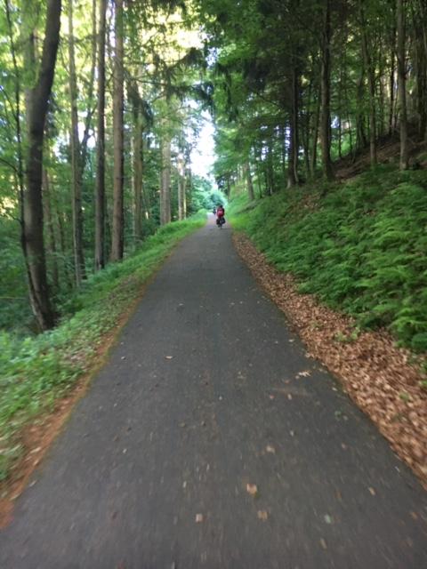 Radfahrer auf einem Radweg im Wald
