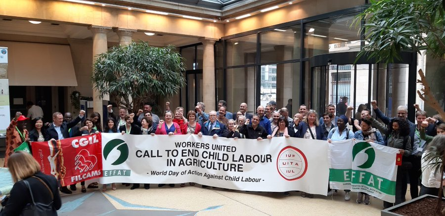 EFFAT affiliates united to end child labour in global agriculture
