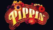 pippin b