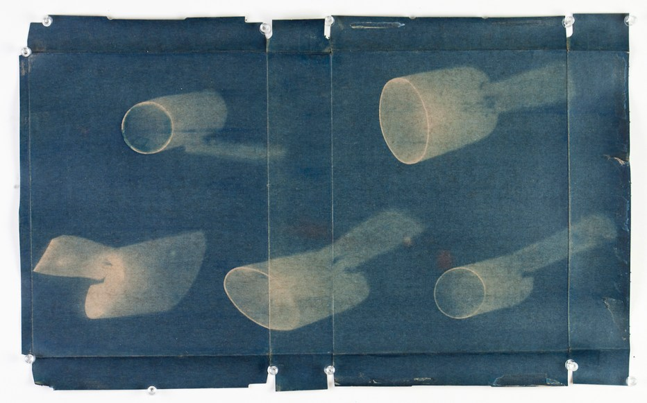 Shampoo Tops© Denis Roussel