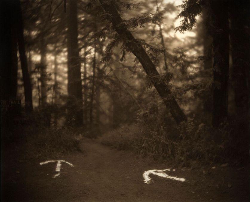 This Way © Kerik Kouklis