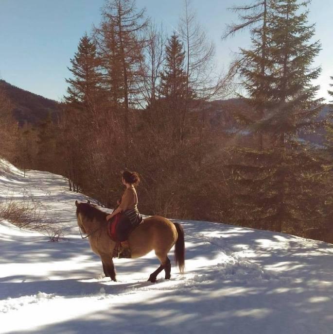 stage yoga montagne cheval