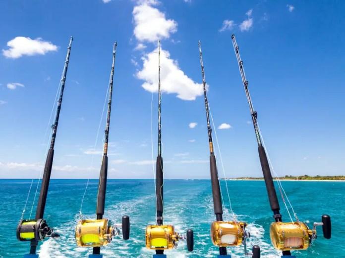 Whitsunday fishing
