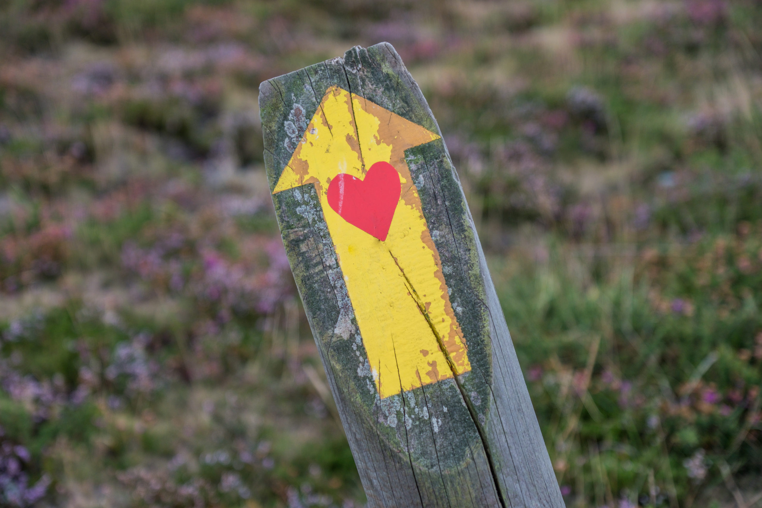 4 Ways to Work with Intention-Yellow arrow with a heart pointing upward