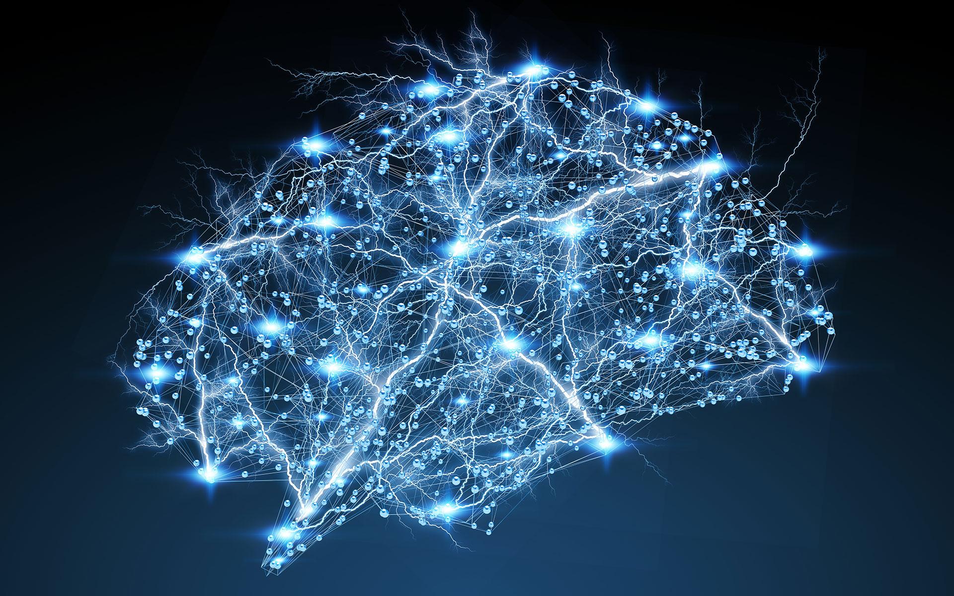electrical circuits inside of a human brain