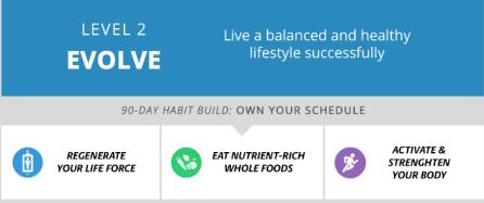 Habit Building System LV2