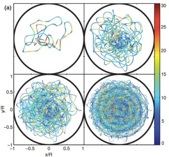 """Four diagrams showing the Pilot Wave Dynamics of the """"walker"""" in a circular corral."""